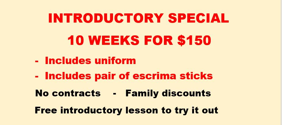 Introductory-special